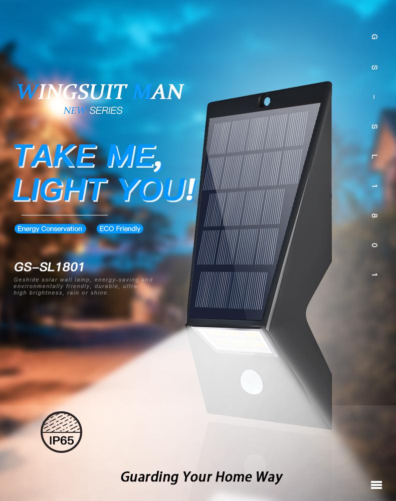solar wall light (4)